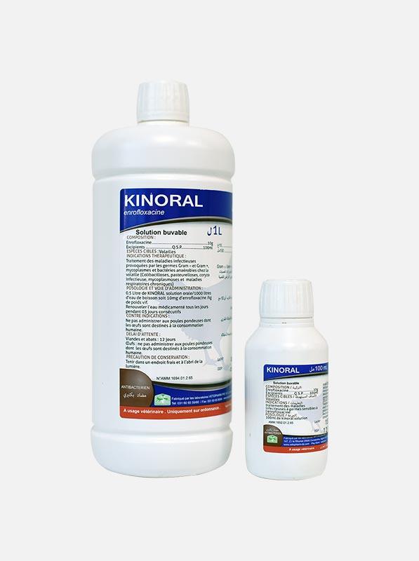 Kinoral_2