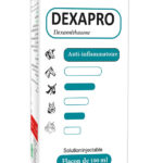 DEXAPRO-100